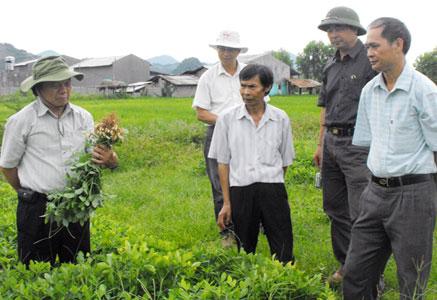 Khuyến nông Lạng Sơn: Tạo động lực xây dựng nông thôn mới