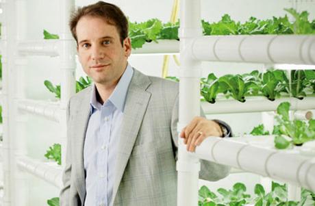 Phần mềm biến container thành vườn rau