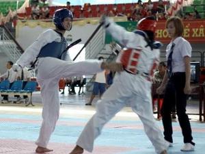 Giải vô địch Taekwondo toàn quốc 2013 khởi tranh