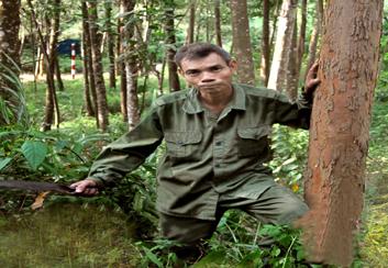 Ông Bâu phát triển kinh tế đồi rừng gắn với bảo vệ biên giới