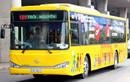 TP.HCM tăng 652 chuyến xe buýt phục vụ Tết