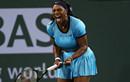 Serena Williams vào chung kết giải Indian Wells