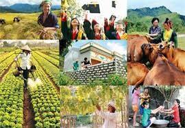 Điều chỉnh một số nội dung Chương trình MTQG xây dựng nông thôn mới