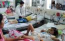 TP HCM còn nhiều nguy cơ gia tăng sốt xuất huyết