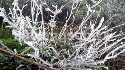 Băng tuyết Mẫu Sơn – hiện tượng thiên nhiên kỳ thú