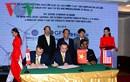 Doanh nghiệp Việt - Mỹ hợp tác sản xuất ván ép từ composite tái chế