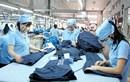 Hàng dệt may Việt Nam vào Australia có thể tăng mạnh với CPTPP