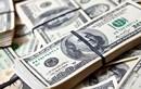 USD ngày 2/5: Tỷ giá trung tâm tăng mạnh