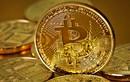 Bitcoin.vn bị xử phạt và tịch thu tên miền
