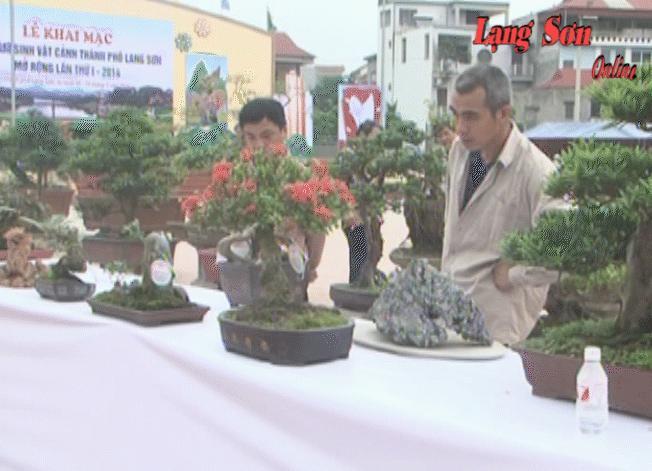 Khai mạc triển lãm sinh vật cảnh thành phố Lạng Sơn lần thứ nhất