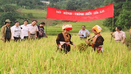 Phát huy truyền thống cách mạng, đoàn kết, phấn đấu hoàn thành các mục tiêu phát triển nông nghiệp và xây dựng nông thôn tỉnh Lạng Sơn trong thời kỳ mới