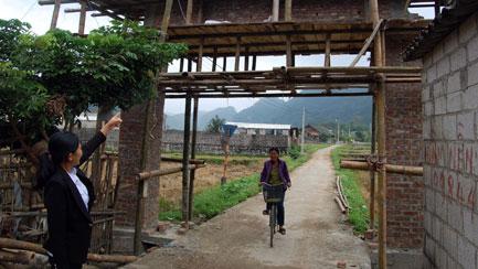 Củng cố, nâng cao tiêu chí các xã nông thôn mới
