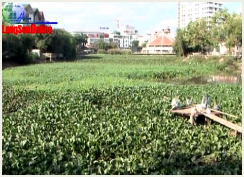 """Ô nhiễm môi trường- Hồ Lao Ly """"kêu cứu"""""""