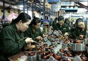 Chi bộ Công ty TNHH Bảo Long: Chú trọng phát triển đảng viên