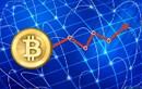 Giá Bitcoin nhích lên mức 8.500 USD