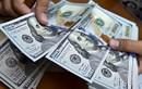 Tỷ giá ngày 24/5: USD tại ngân hàng lại đồng loạt tăng giá