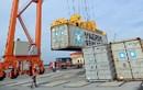 Việt Nam xuất siêu gần 45 tỷ USD sang các nước G7