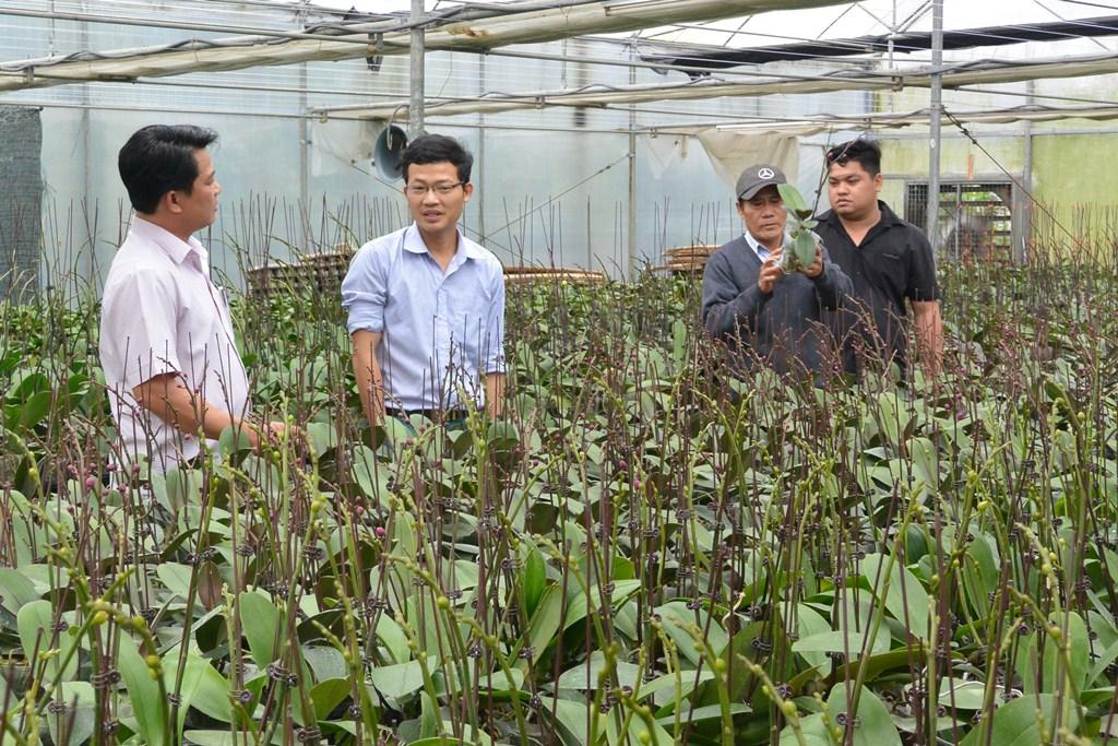 Thu hút đầu tư nông nghiệp công nghệ cao tại miền Trung-Tây Nguyên