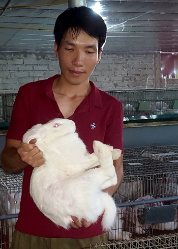 Làm giàu từ nuôi thỏ