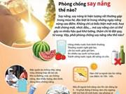 [Infographics] Phòng chống say nắng, say nóng như thế nào?