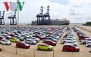 Ô tô nhập khẩu từ Thái Lan về Việt Nam tiếp tục dẫn đầu