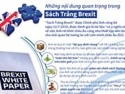 [Infographics] Những nội dung quan trọng trong Sách Trắng Brexit