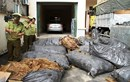 Bắt giữ ôtô vận chuyển 2,5 tấn thịt lợn đang phân huỷ