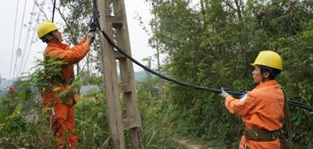 Điện lực thành phố: Nâng cao chất lượng cung cấp điện