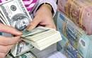 Tỷ giá ngoại tệ ngày 30/7: Giá USD trong nước bật tăng mạnh