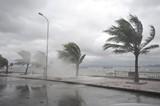 Công điện chỉ đạo ứng phó áp thấp nhiệt đới