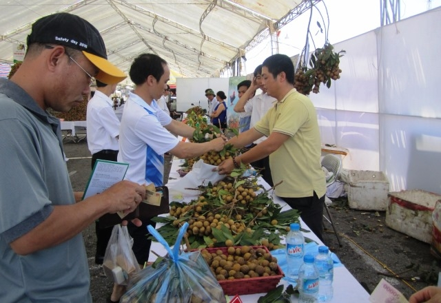Khai mạc Lễ hội nhãn lồng Hưng Yên