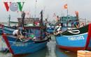 Thừa Thiên-Huế hỗ trợ 3,5 tỷ đồng bảo hiểm cho tàu đánh bắt xa bờ