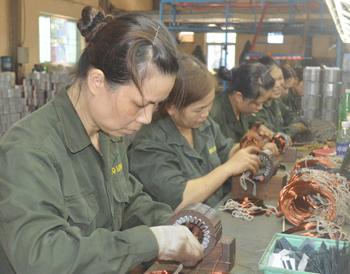 Công ty TNHH Bảo Long: Sáng tạo, thi đua sản xuất theo lời Bác dạy