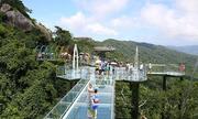Cầu kính cao 450 m xuyên rừng ở Trung Quốc