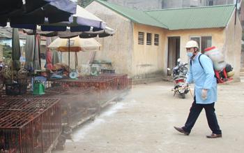 Chủ động phòng, chống dịch bệnh cho đàn vật nuôi