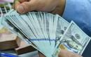 Tỷ giá ngoại tệ biến động nhẹ phiên đầu tuần