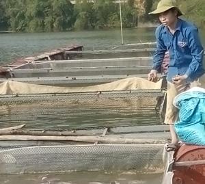 Phát triển hợp tác xã thủy sản: Cách làm ở Bắc Sơn