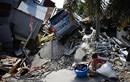 Liên Hợp Quốc huy động hơn 50 triệu USD cứu trợ khẩn cấp Indonesia