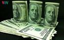 Tỷ giá ngoại tệ ngày 12/10: Ngân hàng thương mại tăng giá USD