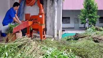 Mô hình liên kết sản xuất chuỗi khép kín sản phẩm ở Hợp tác xã Hợp Thịnh