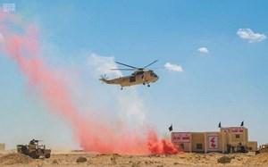 """Ai Cập tổ chức tập trận """"Lá chắn Arab 1"""" với các nước khu vực"""
