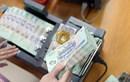 Doanh nghiệp chờ giải thể được khoanh nợ thuế?