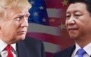 Hội nghị G20 sẽ là diễn đàn tốt cho đàm phán thương mại Mỹ - Trung?