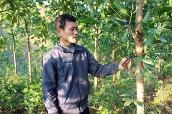 Xây dựng nông thôn mới ở Bắc Sơn: Chuyển biến rõ nét