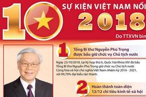 10 sự kiện nổi bật của Việt Nam năm 2018 do TTXVN chọn