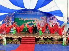 Sự kiện Hoa Anh Đào-Pá Khoang 2019 thu hút hàng nghìn du khách