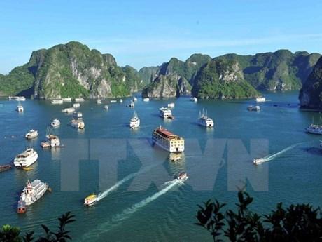 Đình chỉ hoạt động 2 tàu du lịch do vi phạm quy định trên vịnh Hạ Long