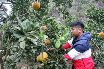 Xây dựng xã nông thôn mới nâng cao: Bước chuyển ở Chi Lăng