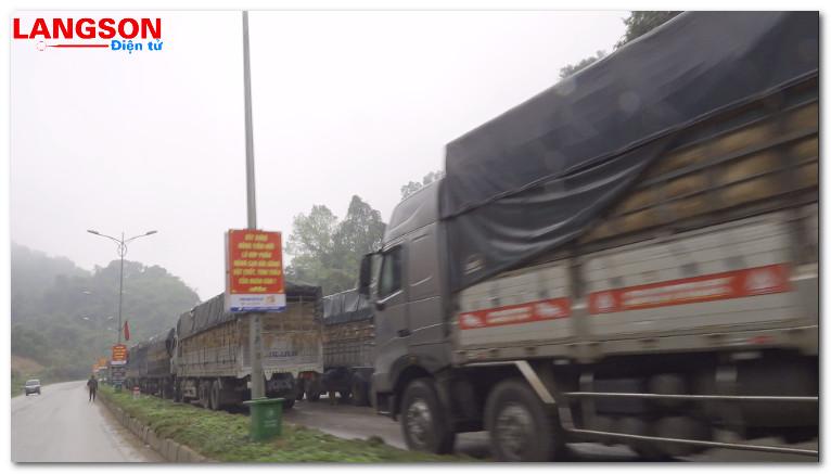 Hàng trăm xe chở dưa hấu ùn ứ tại cửa khẩu Tân Thanh