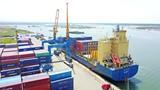 THACO đặt mục tiêu xuất khẩu hơn 15 triệu USD linh kiện phụ tùng